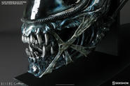 Aliens: Alien Warrior Blue Edition Life-Size Head