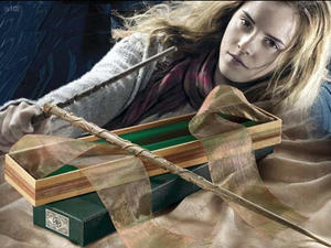 1. Hermione Granger's  stav CR EXCLUSIVE Version